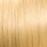 23A-26%20Swedish-Blonde.JPG